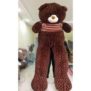 Gấu bông teddy đáng yêu 2m khổ vải 2m2