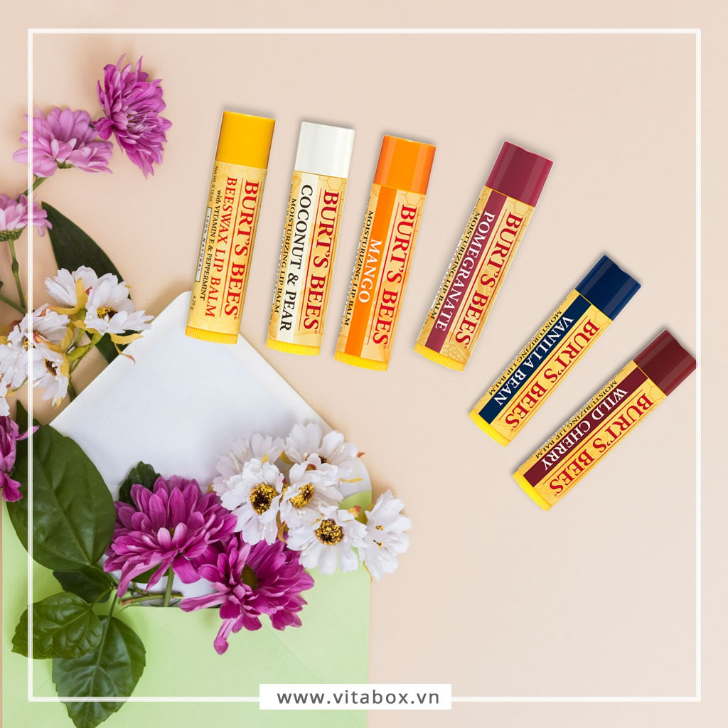 Son dưỡng Thiên Nhiên Burt's Bees Mùi Trái Cây - Natural Moisturizing Lip Balm Burts Bee