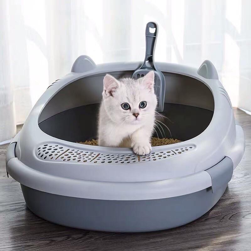 Chậu khay vệ sinh thành cao cho mèo