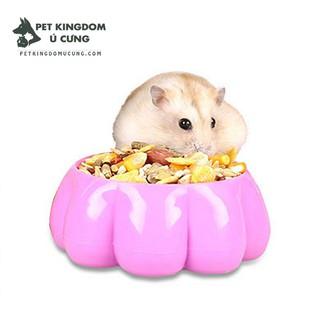 Bát ăn hamster nhựa thumbnail