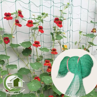 Lưới nhựa xanh làm giàn cho cây leo, làm hàng rào, quây chuồng gà - lưới chắn bóng [ 1m x khổ 2,5m x lỗ rộng 5cm ] thumbnail