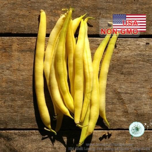 5g Hạt Giống Đậu Cove - Bụi Vàng Siêu Nhanh Cherockee (Phaseolus vulgaris)