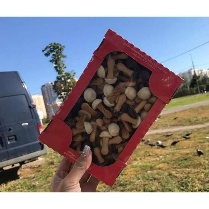 Bánh quy nấm của Nga hot hit - 2712557 , 479475872 , 322_479475872 , 100000 , Banh-quy-nam-cua-Nga-hot-hit-322_479475872 , shopee.vn , Bánh quy nấm của Nga hot hit
