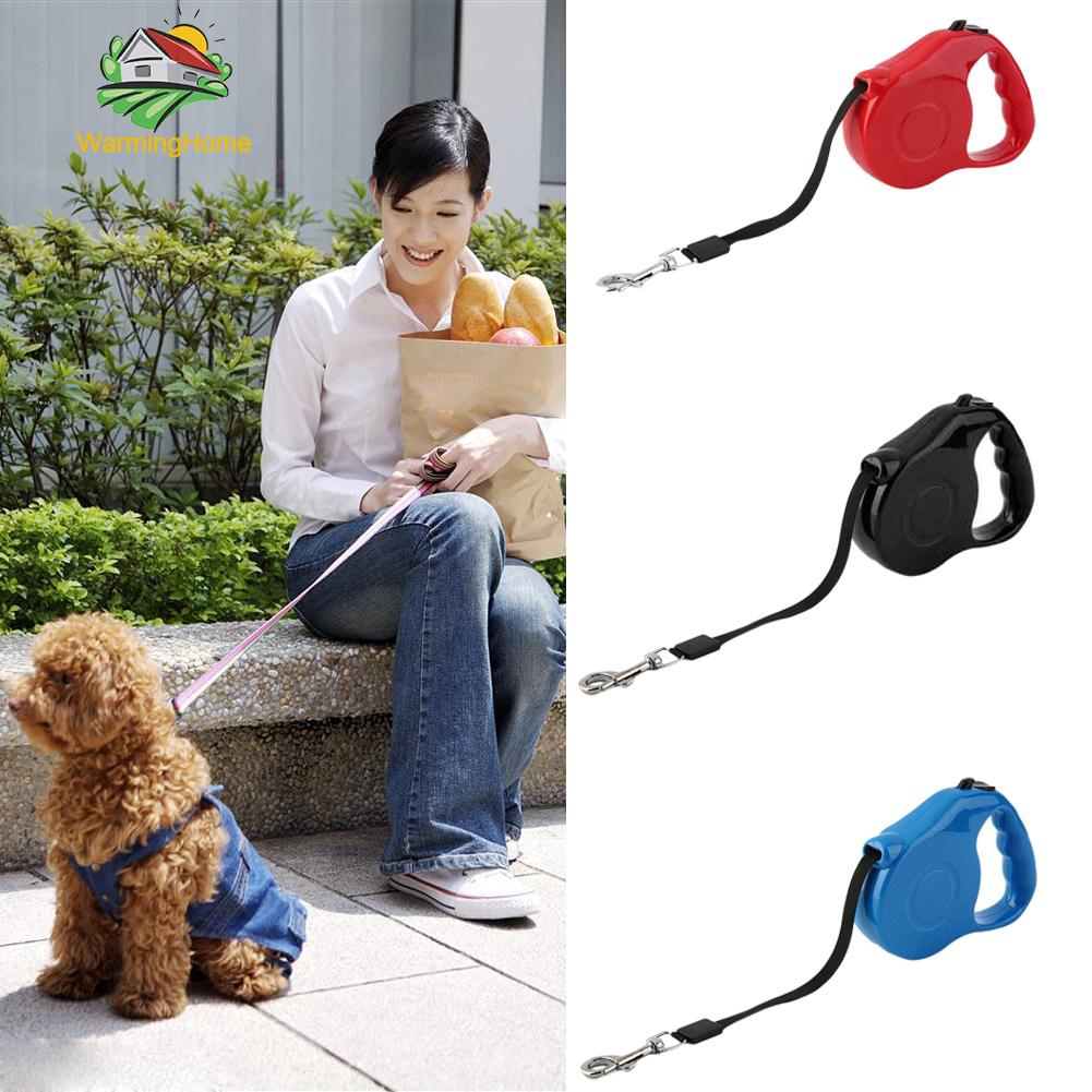 Pet Park Pet Dog Cat Puppy Automatic Retractable Traction Rope Walking Lead Leash