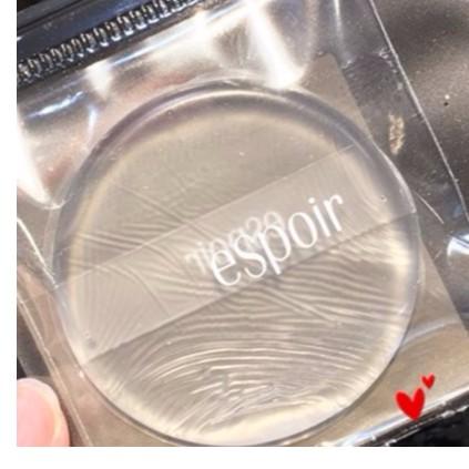 Mút tán kem nền Silicon - tròn