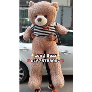 (GIÁ SỐC)(Giá Hủy Diệt)Gấu Bông Teddy 1m8 Khổ vải HÀNG CHUẨN LOẠI 1 cao 1m6 (FREESHIP)