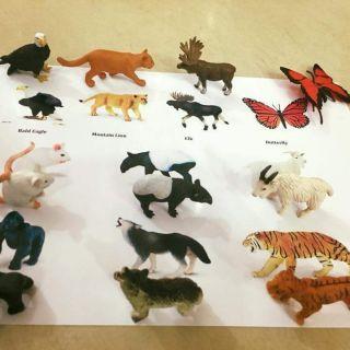 Sét động vật safari