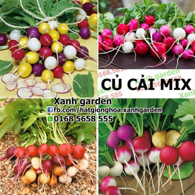 Hạt giống Củ cải mix