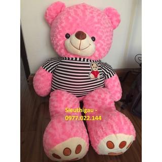 Siêu Rẻ – Siêu đẹp – Gấu Teddy 1m2 – Gấu bông Teddy khổ m2