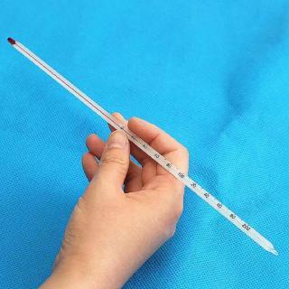 Nhiệt kế thủy ngân đo nhiệt độ từ 0- 100oC; 0-200oC dài 30cm