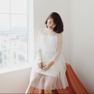 Váy ren xếp tầng petbychang