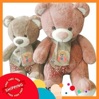 [HOT] Gấu teddy choàng khăn my love
