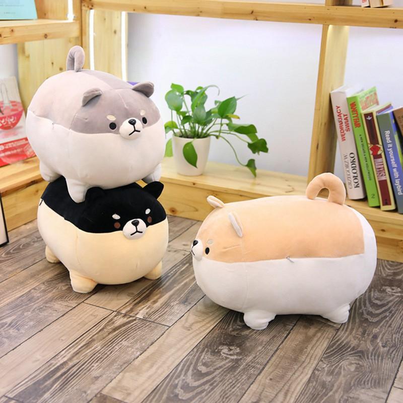 Chó Bông Shiba Mập Ú Dễ Thương Size 40cm - Gấu Bông Cute