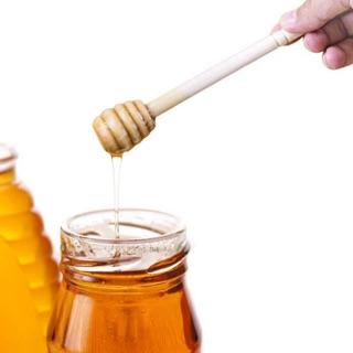 Cây lấy mật ong trang trí decor chụp ảnh