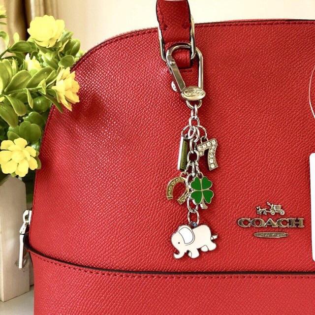 Keychain Coach chính hãng full box ( nhiều mẫu)