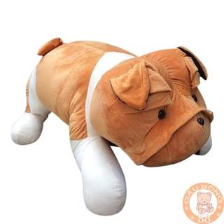 [NHẬP TOYDOLL3 GIẢM 15%] Gấu Bông ,Chó bông pitpun 60cm hàn