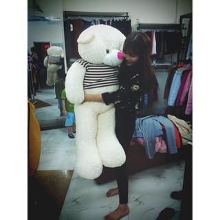 Gấu bông Teddy Cao Cấp khổ vải 1m4 Cao 1,2 màu KEM