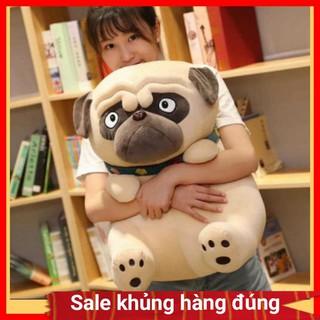 Chó bông mặt xệ pug mềm mịn dễ thương