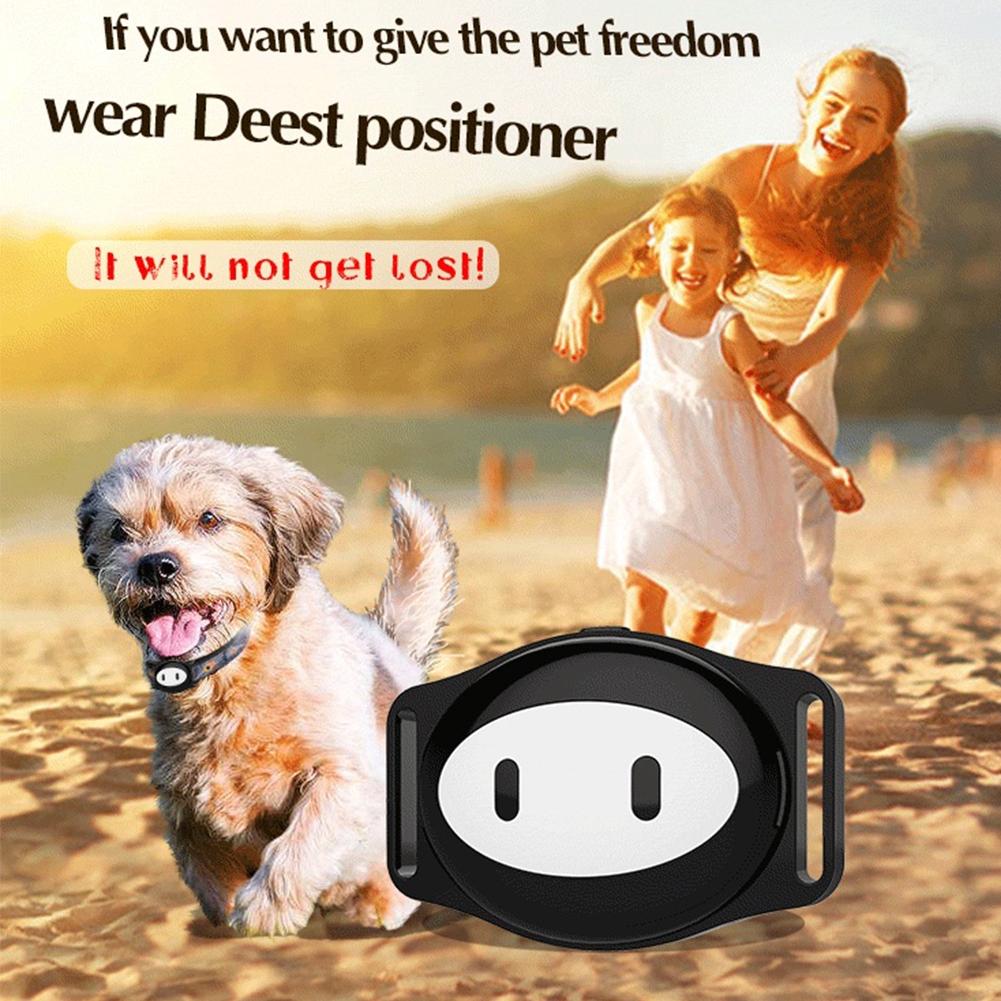 Thiết bị định vị GPS mini chống nước với vòng cổ cho thú cưng - 22049873 , 2731215090 , 322_2731215090 , 955000 , Thiet-bi-dinh-vi-GPS-mini-chong-nuoc-voi-vong-co-cho-thu-cung-322_2731215090 , shopee.vn , Thiết bị định vị GPS mini chống nước với vòng cổ cho thú cưng