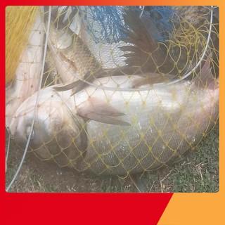 Giỏ lưới đựng cá 5 vanh