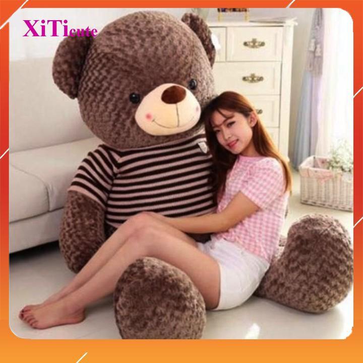 Gấu bông Teddy SIÊU TO dùng để làm quà tặng người thương, gối ôm đồ chơi cho bé hoặc vật trang trí tron