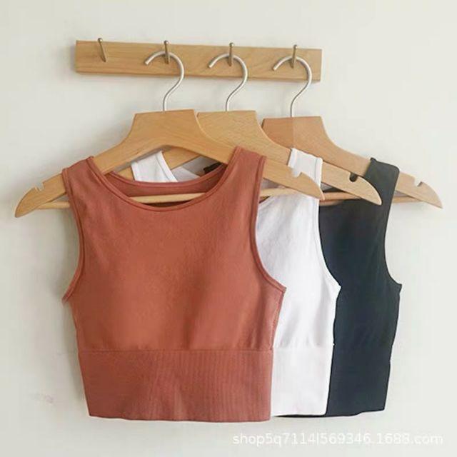 Áo bra, croptop Hàn siêu co giãn, thời trang Hàn