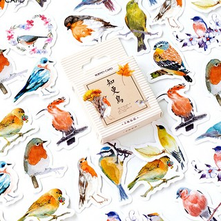 CP☆ 45Pcs/box lovely birds stickers scrapbook diary DIY notebook Skateboard decor