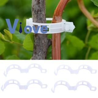 Set 100 kẹp nhựa trồng cây dây leo 25mm
