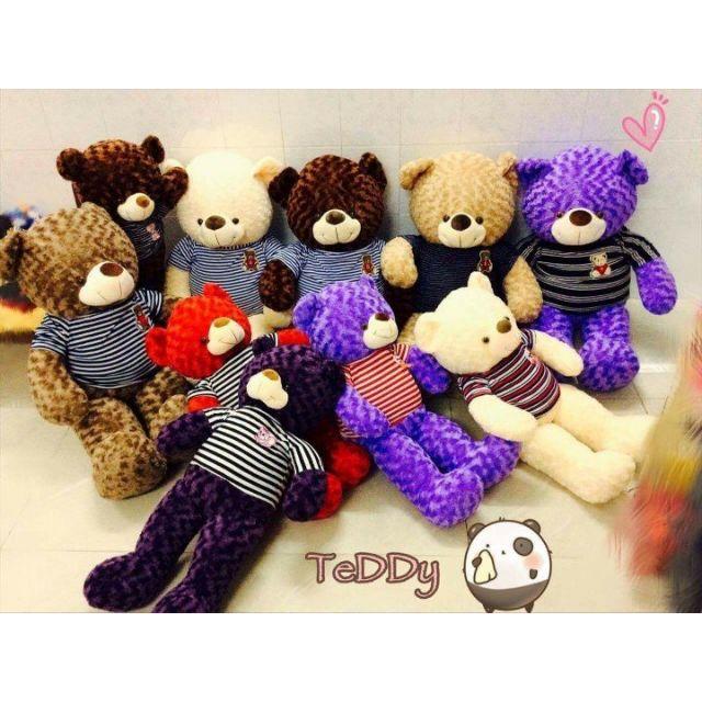 Teddy khổ 1m (trắng sữa, nâu socola, tím cà, hồng, cafe sữa)