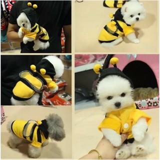 Áo Sweater ong vàng giữ ấm, làm đẹp cho thú cưng chó mèo... thumbnail