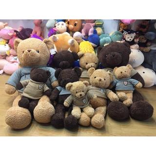 Gấu Teddy Áo Len Melody Socola