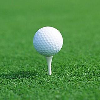 Set 6 quả bóng golf luyện tập