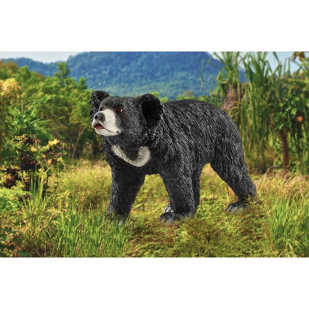 Mô hình Gấu SCHLEICH 14779