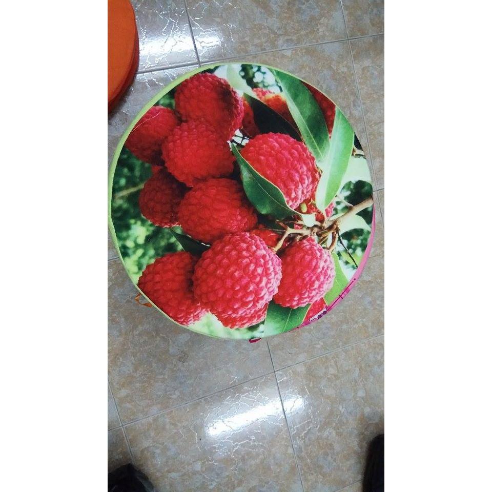 Gối trái cây 3d hình quả vải
