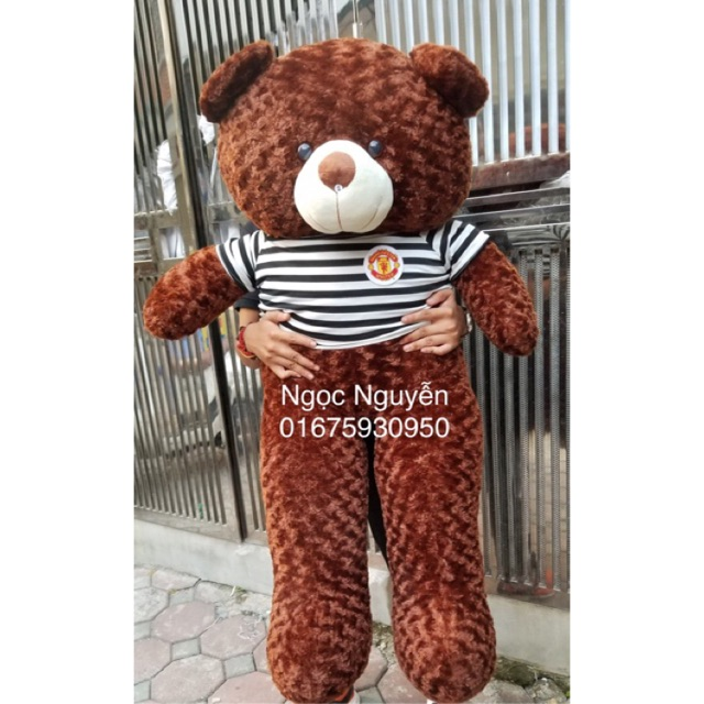 (Ảnh Thật 100%)-Gấu Bông Teddy 1m4 Khổ Vải cao 1m2 HÀNG CHUẨN LOẠI 1