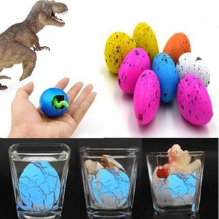 [SIÊU RẺ-CÓ SẴN] Bộ 6 sản phẩm trứng khủng long nở đồ chơi nở trong nước