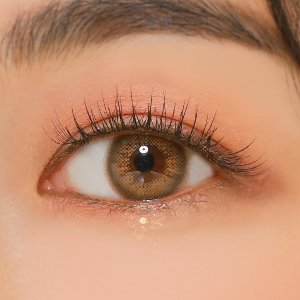 ANN365 Lens Màu Nâu Hồng Trà 1 Ngày Đủ Độ Cận (Từ 0.0 Đến 8.0) Mellow Brown - 1 cặp