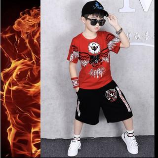 Set bộ quần áo trẻ em , áo thun bé trai in hình Đại Bàng dành cho bé trai từ 18-28kg