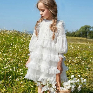 NNJXD Baby Girls Dress Lace Princess Dress Kids Long Sleeve Clothing for Girls Children Birthday Party Dress Girls Casual Tulle Gown for Wedding