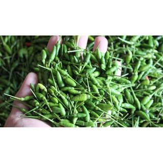 0.1Gr Hạt Giống Ớt Xiêm Thái Lan Hạt Ớt Hiểm Rừng thumbnail