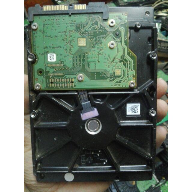 [CỰC CHẤT] Ổ cứng 250G dùng cho PC
