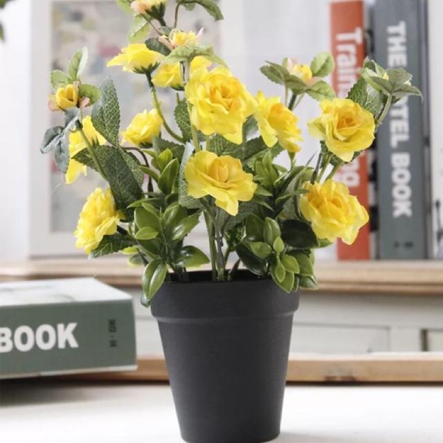 Chậu hồng tỉ muội hoa lụa mini để bàn