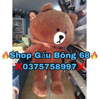 Gấu bông Brown 1m7 khổ vải,Chiều cao 1m5 (Hình thật)