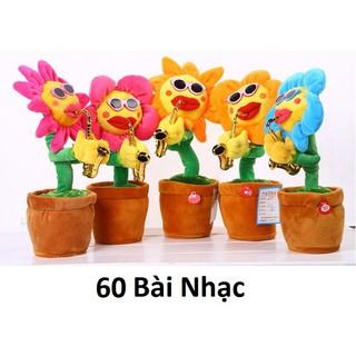 [Sỉ] Combo 6 hoa uốn éo, hoa biết thổi kèn, hoa hướng dương biết hát