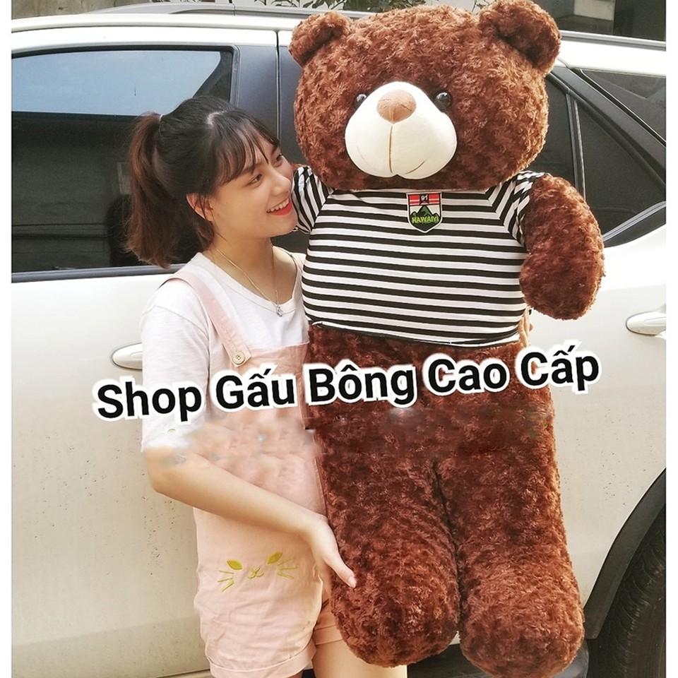 GẤU BÔNG TO, THÚ NHỒI BÔNG, Gấu Teddy, gấu Brown, Gấu Heo Híp, GỐI ÔM