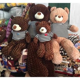 Gấu bông teddy đủ size 1m đến m8