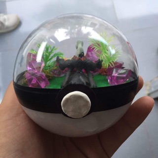 Bóng chứa Pokemon trong Darkrai