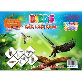 Thẻ Thông Minh Dạy Trẻ Theo Phương Pháp Giáo Dục Sớm Glenn Doman - Birds – Các loài chim