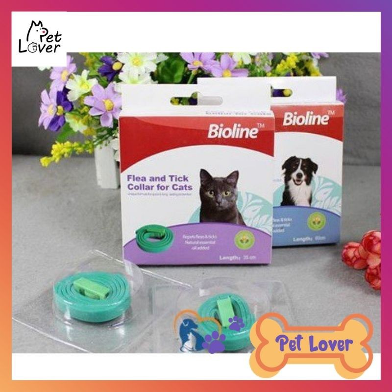 [FREESHIP] Vòng cổ trị ve rận, bọ chét cho mèo Bioline, tác dụng trong 4 tháng, dễ dàng sử dụng - Petlover-