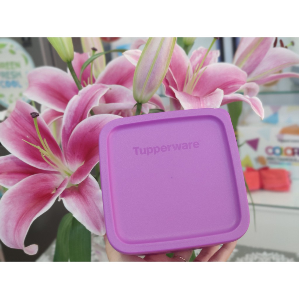 Tupperware Freeship Tupperware trữ mát, trữ khô Small Summer 650ml / Rounstax đa năng